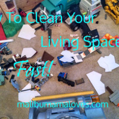 How to Clean Your Living Areas Fast