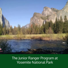 The Junior Ranger Program at Yosemite National Park