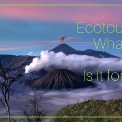Family Travel: Ecotourism: What Is it & Is It For Us?