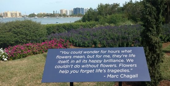 Our Marie Selby Botanical Gardens Experience