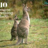 Conscious Parenting: 10 Conscious Parenting Hacks Every Parent Should Know